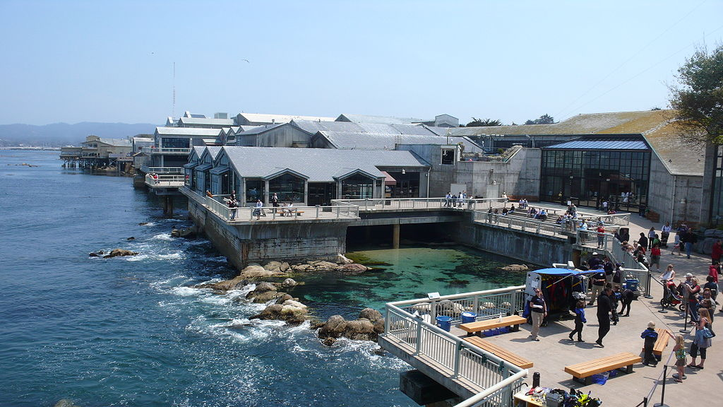 Monterey Bay Aquarium. Photo by: Meij Kobayashi